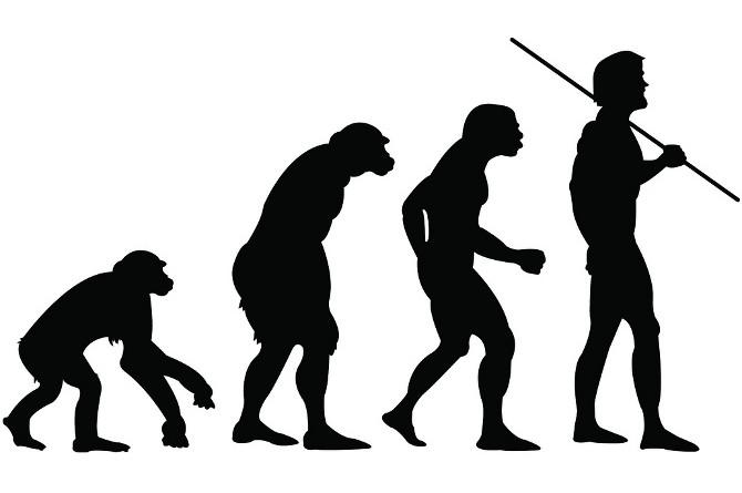 人類の進化論
