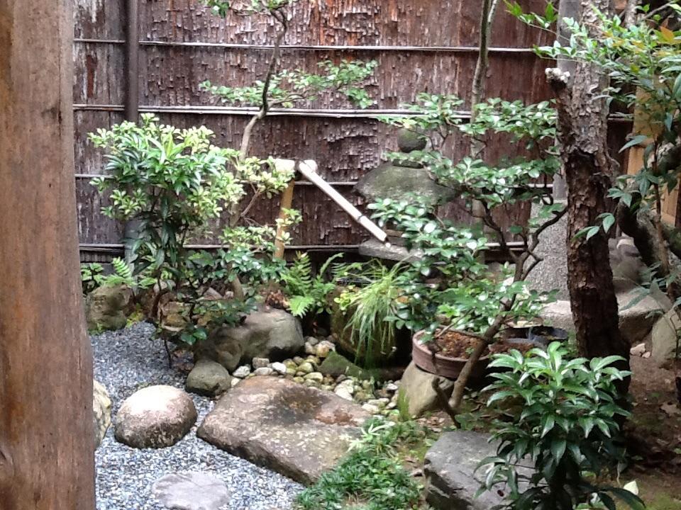 本家 尾張屋 中庭